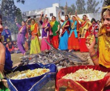 Enjoy this Auspicious Lohri