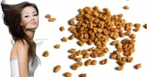 Fenugreek seeds for remove to hair dandruff