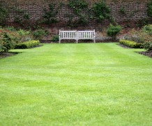 Tips, to Perfect Green lawn